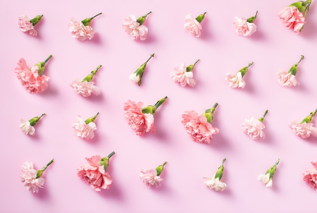 Minimalist flat lay with carnation flowers for mother's day, valentines day background design concep