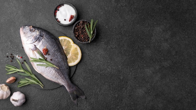 Minimalist fresh sea bream fish