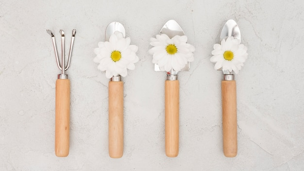 Minimalist gardening tools and daisy flowers