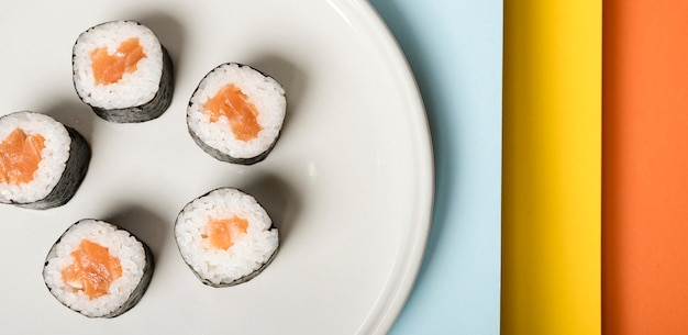 Minimalist plate with sushi rolls close-up