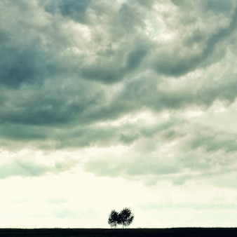 Minimalist single tree silhouette. concept of loneliness, depression, escape, friendship, support, care, marriage.