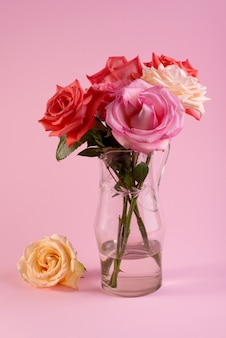Минималистичный натюрморт с одной нежной розовой розой в вазе на цветном фоне