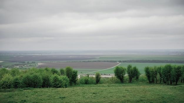 최소한의 농업 풍경