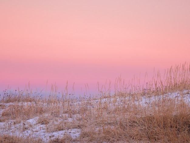 A minimalistic arctic landscape with a curved coastline covered with sparse vegetation and a bright pink sky.