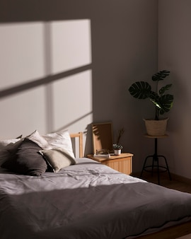 Minimalistic bed with interior plant