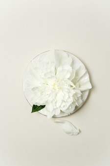 Minimalistic flower arrangement. white peony flower and petals on a white plate on pastel background, top view