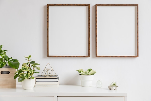 白い棚に 2 つの茶色の木のフォト フレームと本、スタイリッシュな鍋に美しい植物、家庭用アクセサリーを備えたミニマルな家の装飾。白い壁。