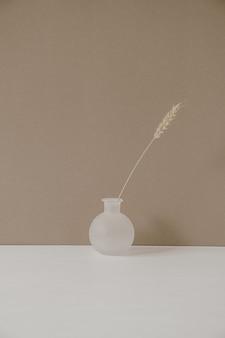 Minimalistic modern hygge style interior decoration design. rye wheat ear stalk in white vase on pastel beige.