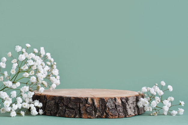A minimalistic scene of a felled tree lies with flowers on a natural background.