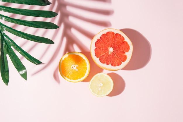 Минималистичный летний солнечный состав. яркий узор с тенью от пальмового листа на розовом фоне