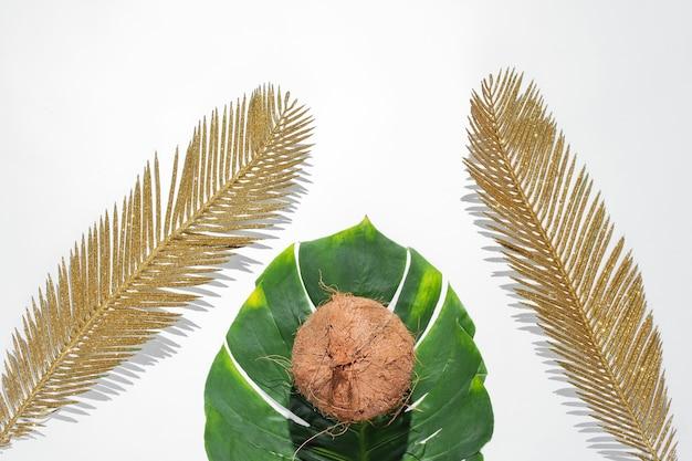 ミニマルなトロピカルな静物。モンステラと金色のヤシの葉、白い背景の上の影とココナッツ。ファッションコンセプト。上面図。