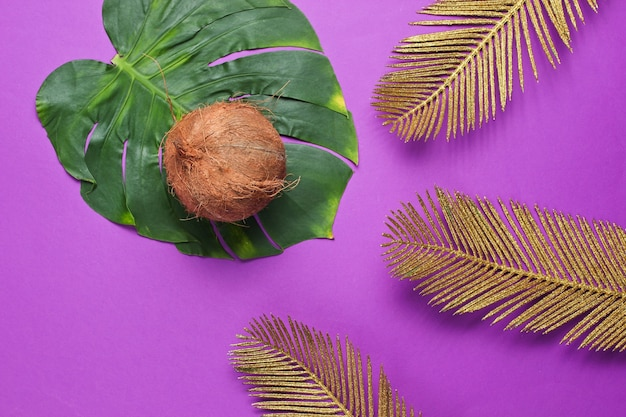 Minimalistic tropical still life. coconut with monstera and golden palm leaves, shadow on purple background. fashion concept. top view.