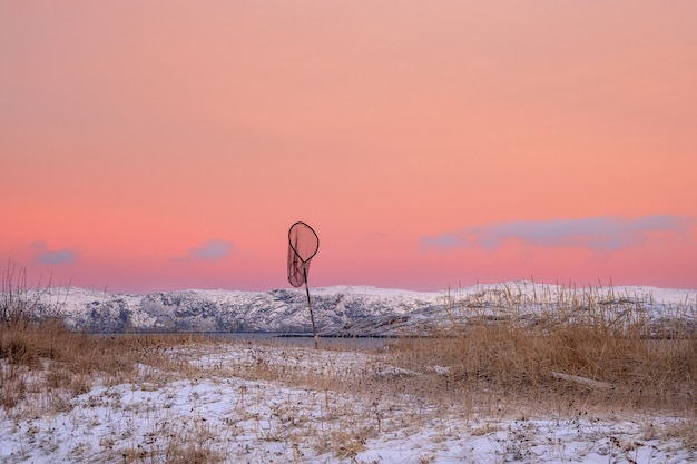 Minimalistic winter arctic landscape with a net on the shore covered with sparse vegetation and a bright pink sky.