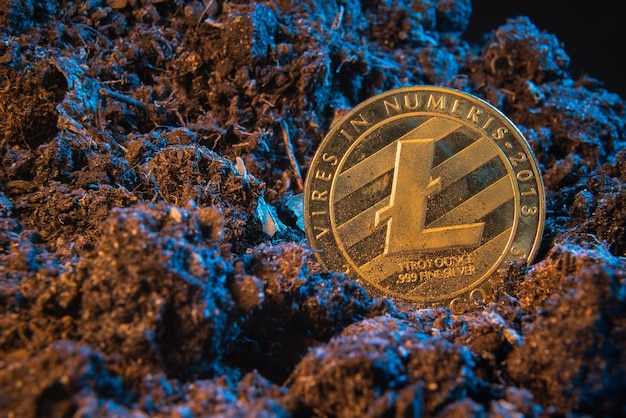 Майнинг криптовалюты - litecoin, монета онлайн-денег в грязи.