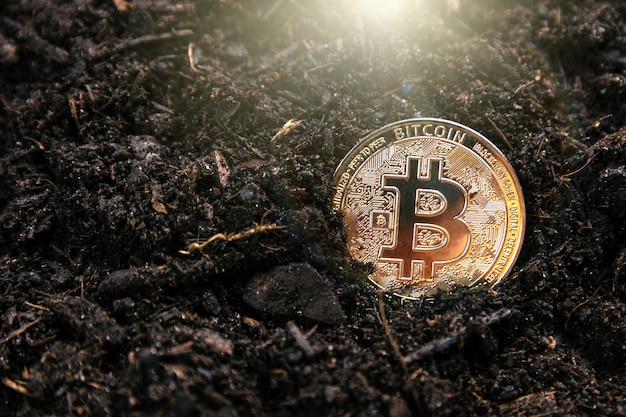 Mining golden bitcoin. concept of cryptocurrencies