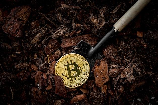 Добыча золотой биткойн концепции инвестиций и процентов