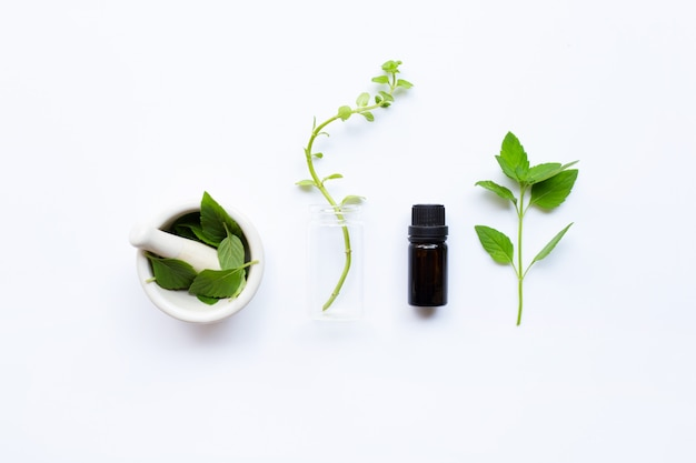Mint essential oil in a glass bottle with leaves on white