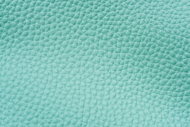 Mint green leather background