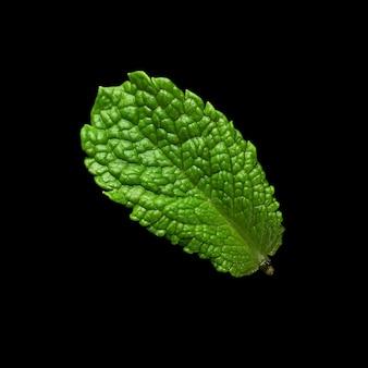黒い表面にミントの葉