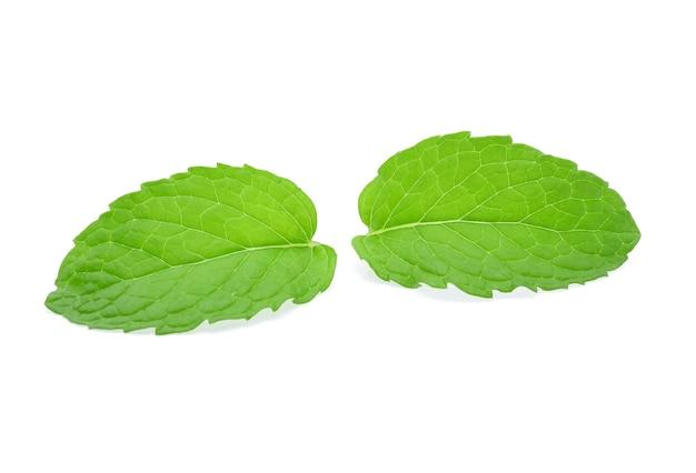 ミントの葉は白で隔離されます。