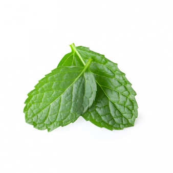 Mint leaves isolated over a white background.