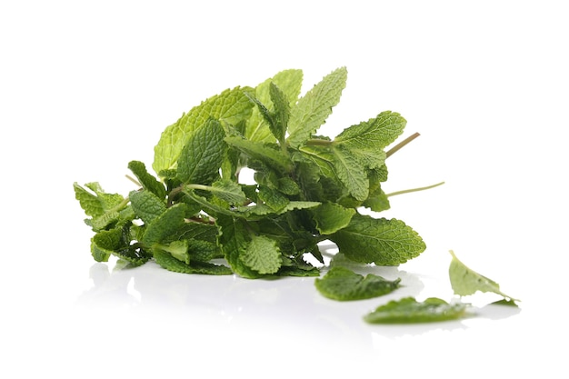 Mint leaves on a white surface