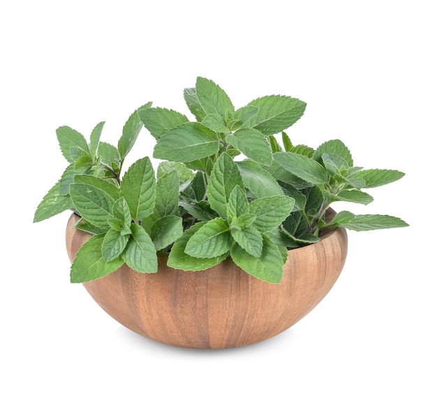 Mint leaves in a wooden cup isolated on white