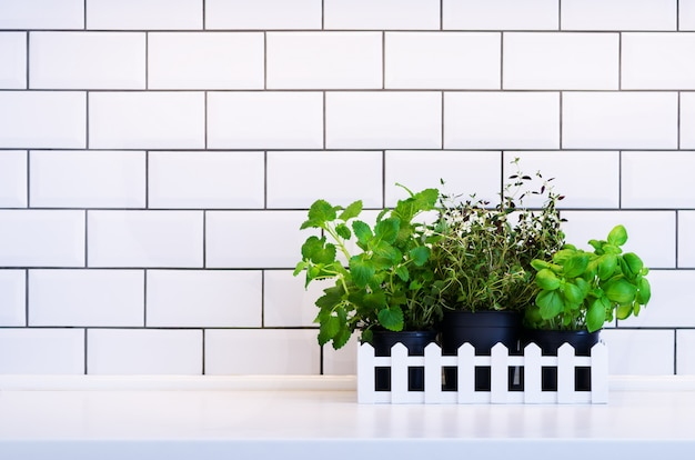 Mint, thyme, basil, parsley - aromatic kitchen herbs in wooden crate on kitchen table, brick tile.