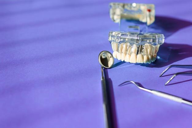 Зеркало и другие инструменты стоматолога рядом с пластиковой моделью протеза.
