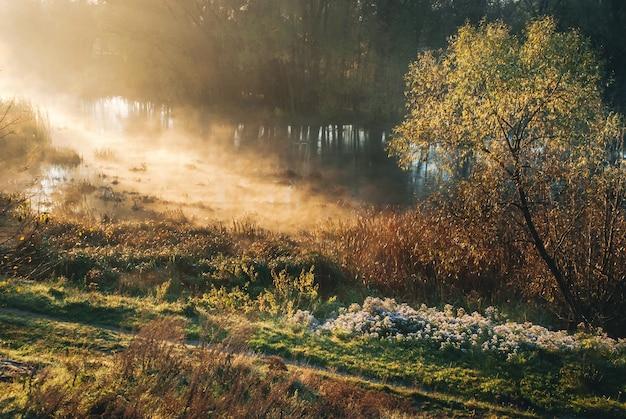 早朝、川の近くで霧と霧が川を越えて