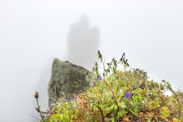 바위 봉우리와 젖은 풀이 있는 산 속의 안개