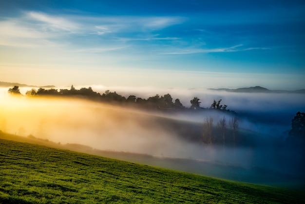 Туман в долинах рано утром