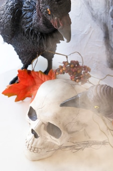 Mist over vultures and skull