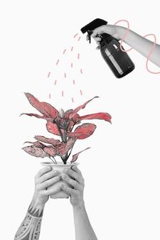 Misting a houseplant remix illustration graphic