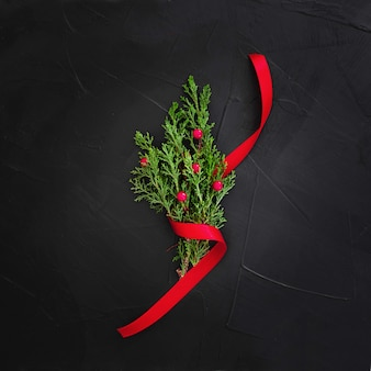 Mistletoe on a black background