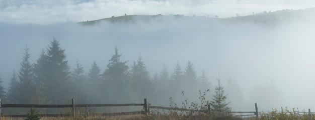 Misty daybreak in autumn carpathian mountain, ukraine. six shots stitch image.