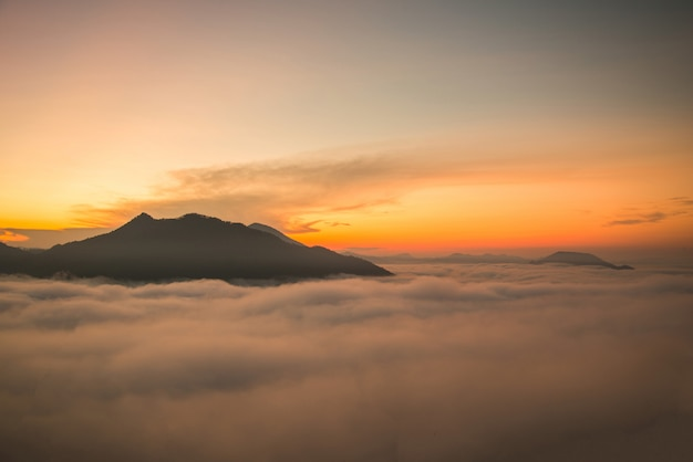 Misty forest hill fog mountain top view misty sunrise landscape