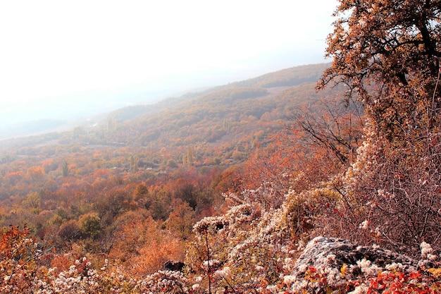 秋の山々の霧深い風景。