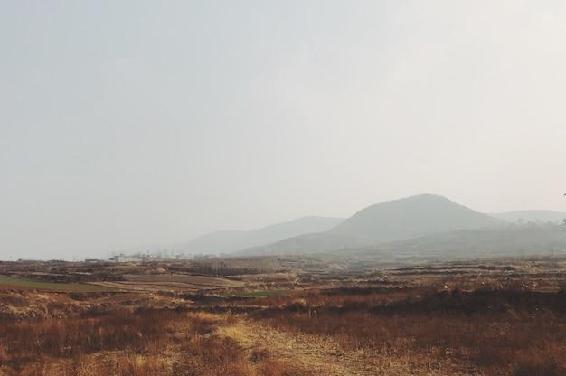 Туманное утро в поле с горами на заднем плане