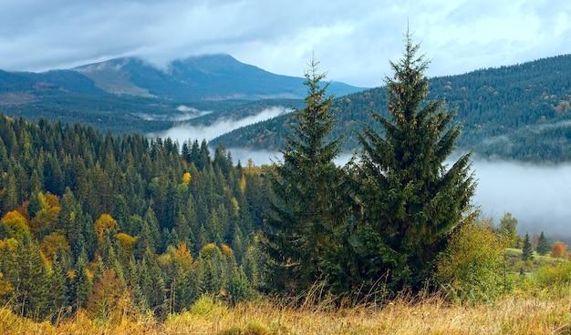Туманное утро осенью карпаты, украина.