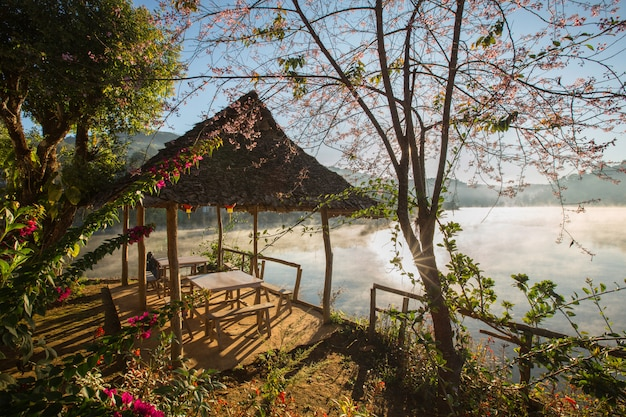 Misty morning light cover on the lake at ban ruk thai old village, mae hong son, northern