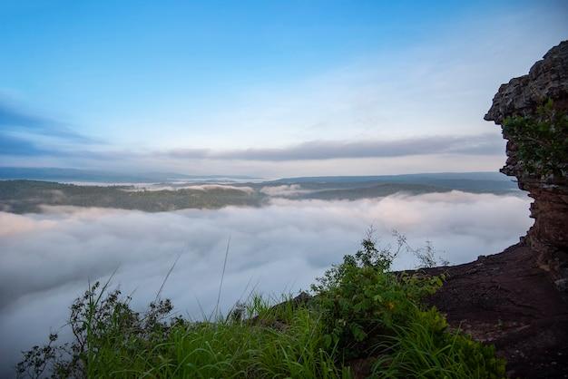 朝の霧深い山の森の風景
