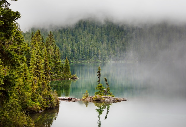 山の穏やかな早朝の霧深い山の湖。