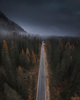 Misty mountain pass in the dolomites