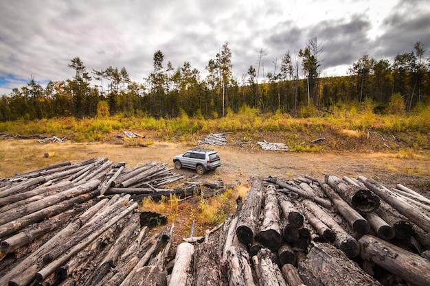 오래 된 통나무 근처가 숲에서 미쓰비시 파제로 스포츠.