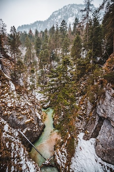 Mittenwald is a forest in bavaria, germany