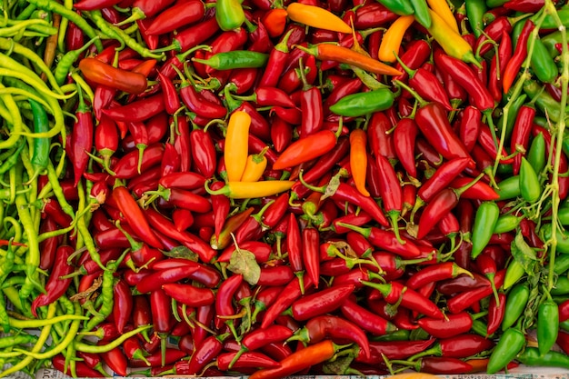 Mix of chili peppers, bell peppers, capi color assortment on vegetable market.