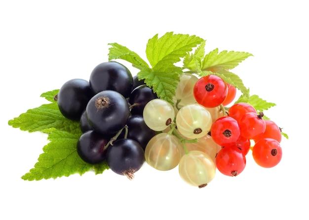 Смешайте свежие спелые ягоды смородины с листьями, изолированными на белом фоне.