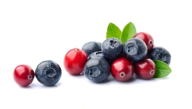 Смесь ягод изолированные. черника и клюква.