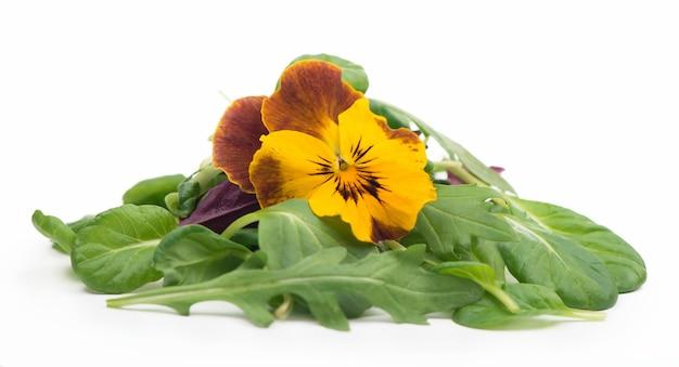 흰색 배경에 arugula 시금치 샐러드 빨간색과 식용 꽃과 샐러드 믹스
